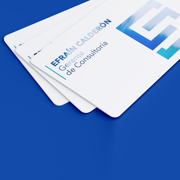 tarjeta-sectorizada.-tarjetas-wilson2